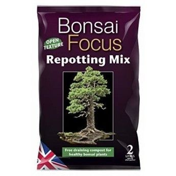 Mix do bonsai Bonsai Focus Repotting Mix 2L