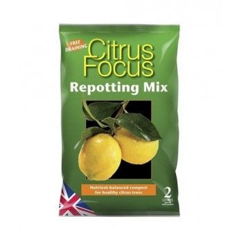 Kompost do cytrusow  Citrus Focus Repotting Mix 2L