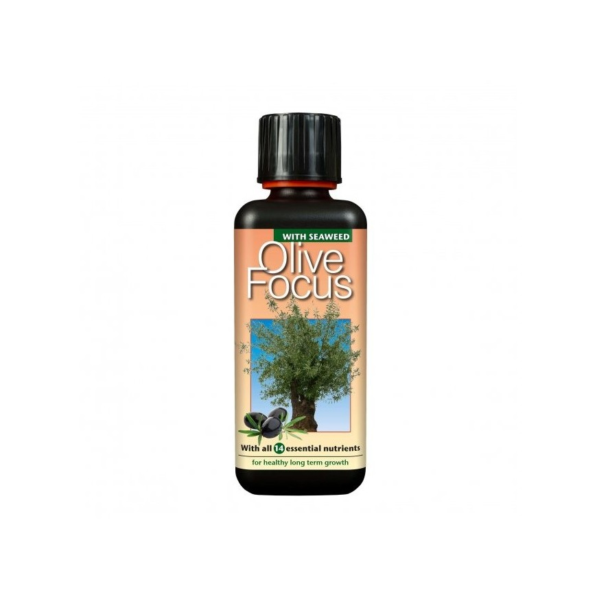 Odżywka nawóz do palm Palm Focus Growth Technology 100ml