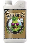 Big Bud Coco 250ml