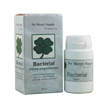 Bacterial No Mercy 50ml